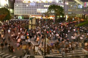 Japan Travel Photographs Shibuya Crossing